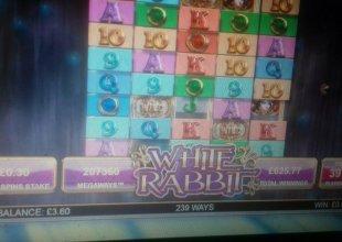 White Rabbit £5 left to my name 30p stake