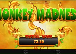 Small stake 180x King Kong Cash