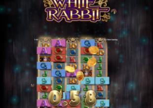 White rabbit 3769x bonus buy..