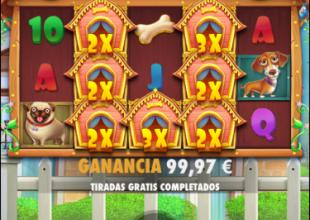 nice multiplier screen in dog house
