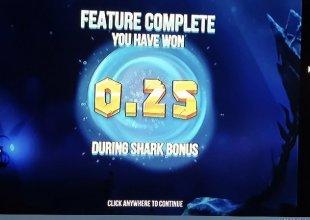 Razor Shark 🦈