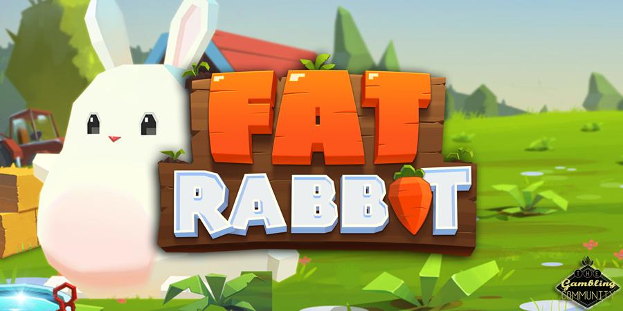 REVIEW – Push Gaming Fat Rabbit