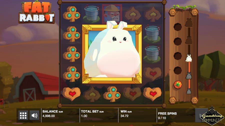 Fat Rabbit Feature